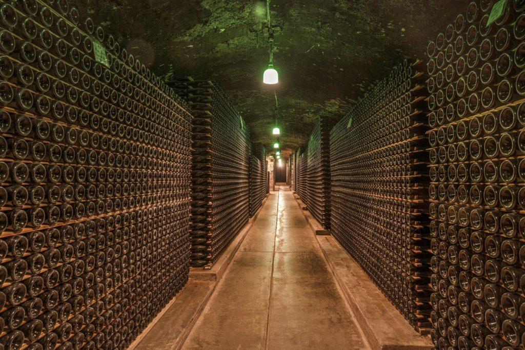 Troubles musculosquelettiques et viniculture Salarié
